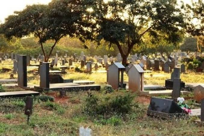 """6dcd5818c5ac3d ... trouble after they were convicted of performing money ritual popularly  known as """"mubobobo"""" in Zimbabwe, with 63 pairs of women's panties in a  graveyard."""